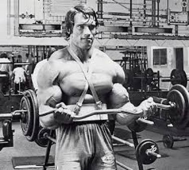 Image result for arnold schwarzenegger lifting